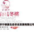 山东省济宁市绿原生态农业太白桃园千亩有机冬桃项目